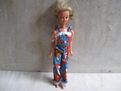 Willy Wilderbras pop, jaren 60/70. De Nederlandse barbiepop. Goede staat. Kleertjes niet orgineel.