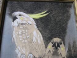 J. Rijkhoek pastel van 2 papegaaien in goede conditie en ingelijst. Niet verkleur. Lengte 52 cm, breedte 35 cm.